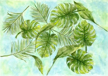 Monstera palms, ti leaves, robellini palms
