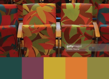 Color scheme inspired by the auditorium seats